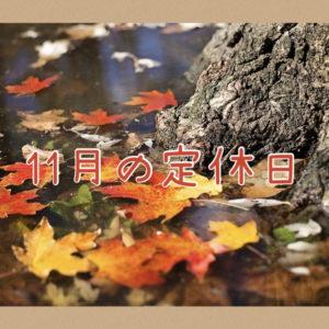 【サロン情報・定休日】2020年11月の定休日のお知らせ♪